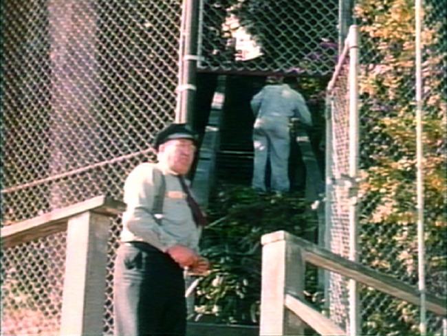Alcatraz inmate gardener