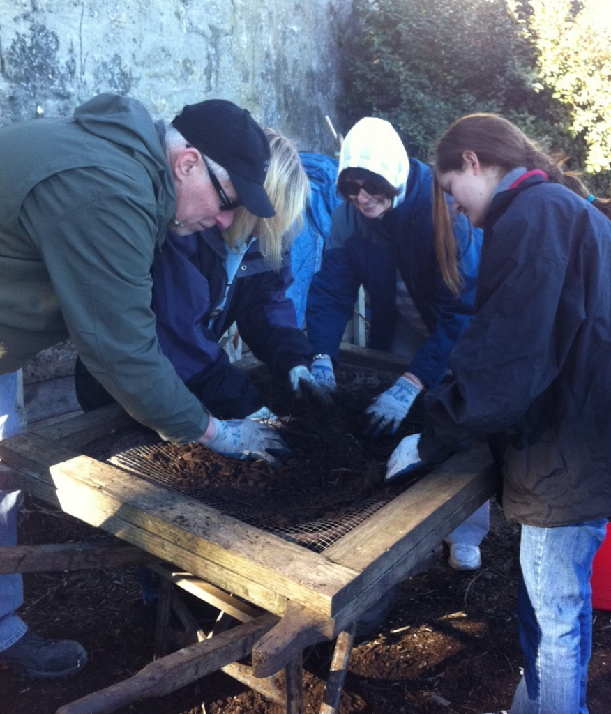 Sifting compost for MLK Day of Service. Photo by Shelagh Fritz