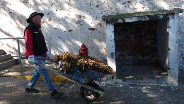 Pushing loaded wheelbarrows on the island keeps volunteers fit. Photo by Diana La