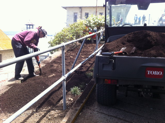 Adding our rich compost to the planting bed. Photo by Shelagh Fritz