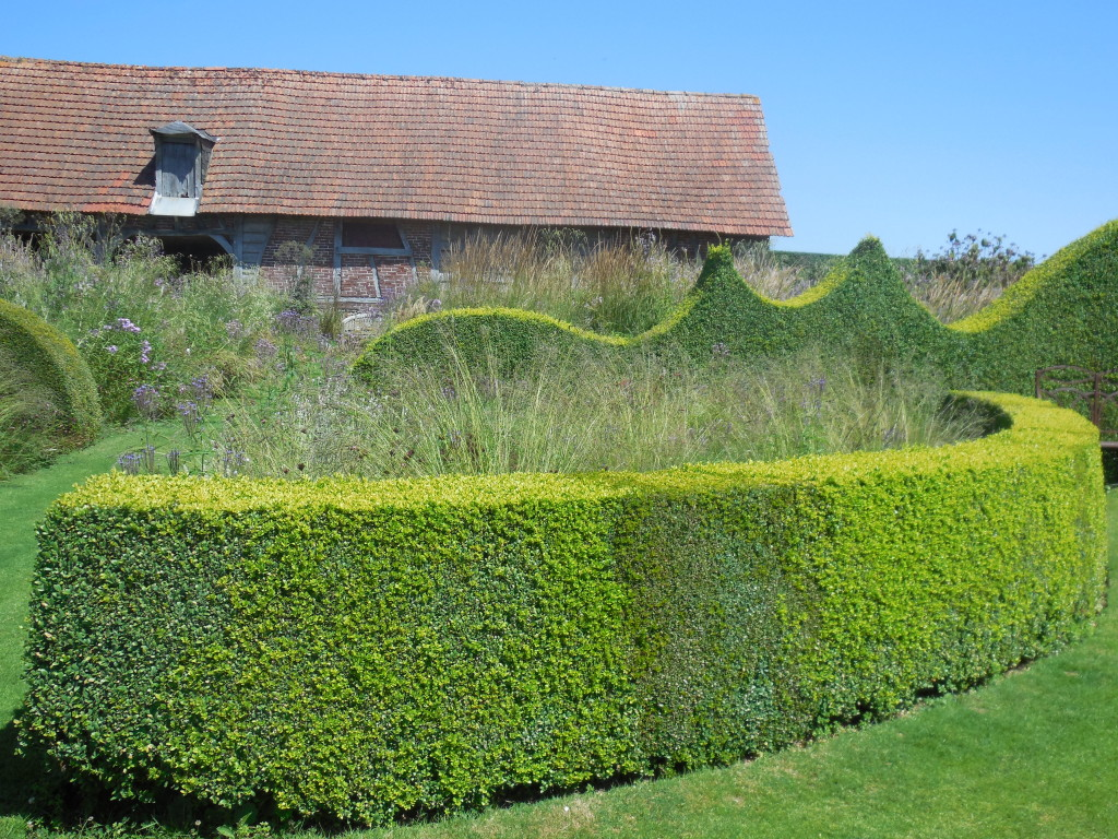 Shaped boxwood hedges at Le Jardin Plume. Photo by Shelagh Fritz