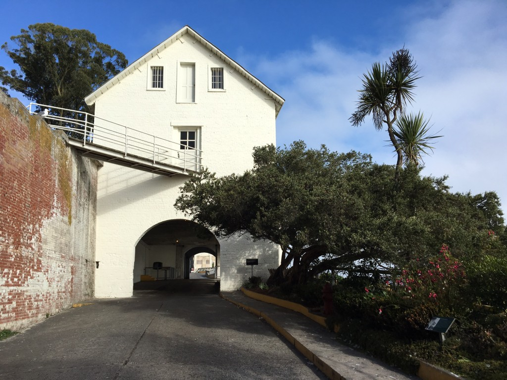 Sally Port today with declining Cordyline pictured. Photo by Shelagh Fritz